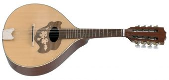 Plochá mandolína Pro Arte  Model 2 Vysoký lesk